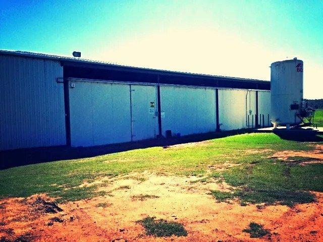 9Dorf Farm's aquaculture facility